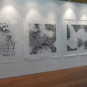Four graphite pencil on paper drawings 150 x 150 cm installed at RDS 2013 - James White Prize for Drawing 2013