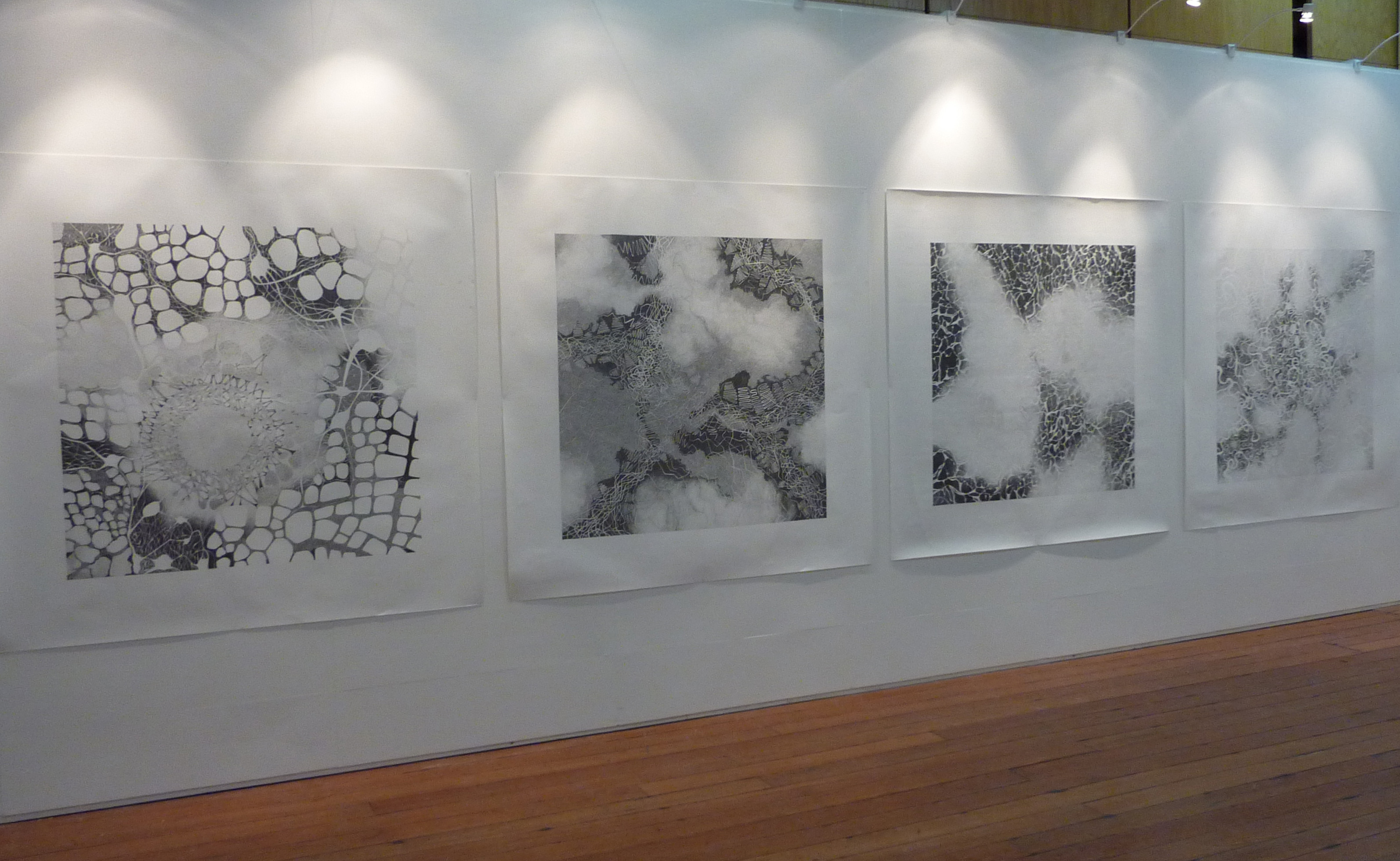 Four graphite pencil on paper drawings 150 x 150 cm installed at rds 2013 james