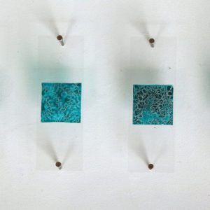 Set of Four Gentian Blue Plankton (2016), ink on glass, each 2.2 x 2.2 cm