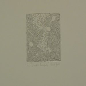 Synaptic Retinopathy (2103), etching, 10.5 x 14.8 cm